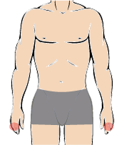 メンズ脱毛部位:手の指