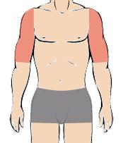 メンズ脱毛部位:両ひじ上