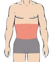 メンズ脱毛部位:お腹