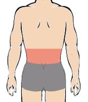 メンズ脱毛部位:腰