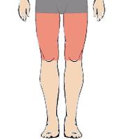 メンズ脱毛部位:両ひざ上