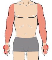 メンズ脱毛:腕まるごとコース