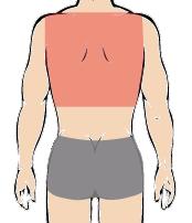 メンズ脱毛部位:背中
